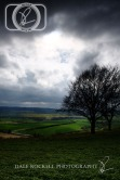 Bison Hill_IMG_5894_05-04-14