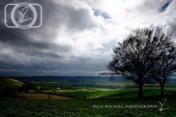 Bison Hill_IMG_5895_05-04-14