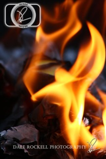 Fire_IMG_6703_17-06-14