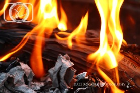Fire_IMG_6723_17-06-14