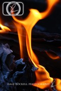 Fire_IMG_6725_17-06-14