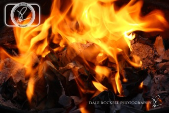 Fire_IMG_6751_17-06-14