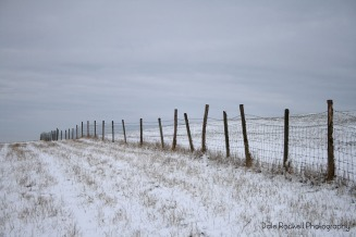 Bison Hill_Snow_IMG_8643_17-01-16